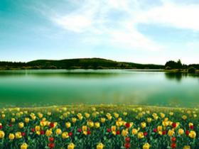 卿洪义:被隔离的春天