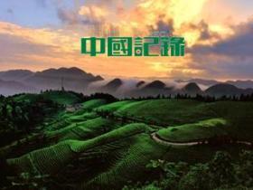 """安徽""""美丽乡村""""规划建设初显成效"""