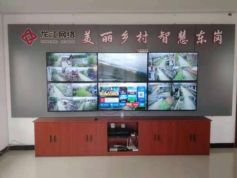 黑龙江积极推动数字乡村建设 着力破解乡村振兴发展难题