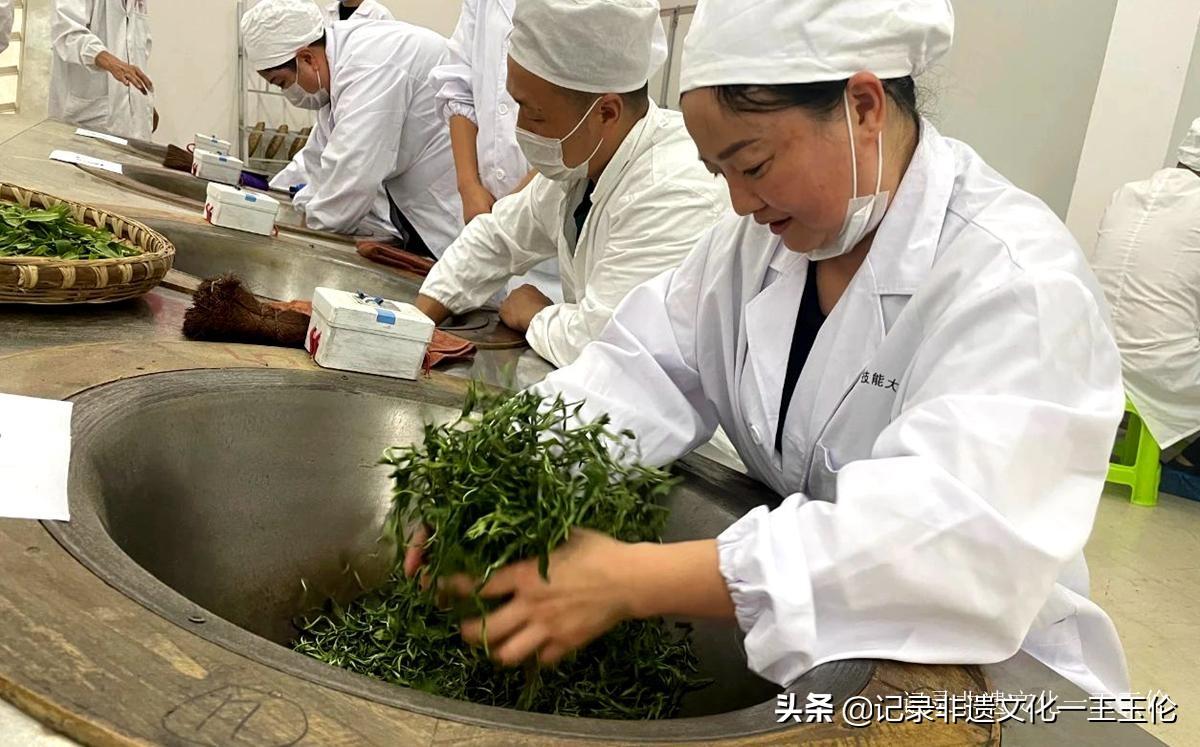 贵州绿茶加工能力提升专项能力培训班9月15日在花溪久安正式开班